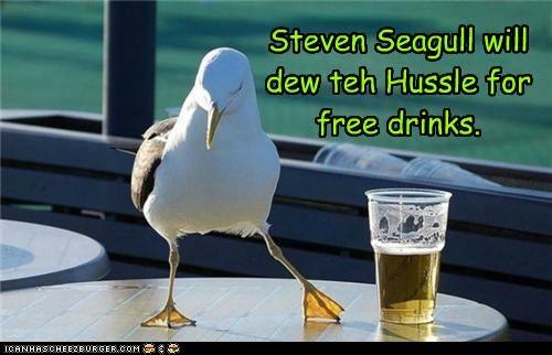 caption captioned dance dancing drinks hussle hustle pun seagull steven segall - 5167084544