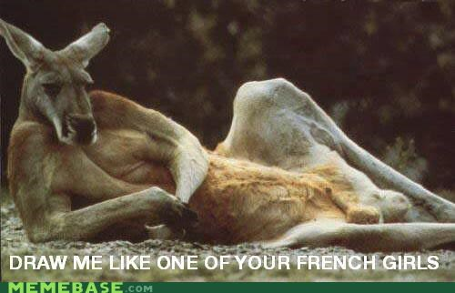 draw me joeys kangaroo lying down Memes - 5168540416