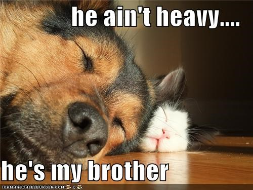 he ain't heavy.... he's my brother