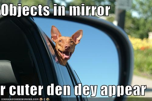 Objects in mirror r cuter den dey appear