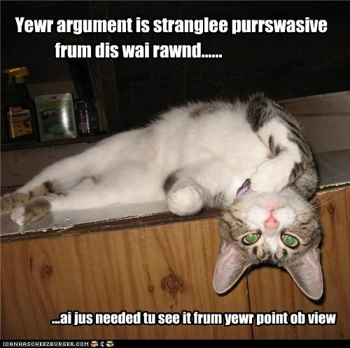 argument,caption,captioned,cat,persuasive,point,point of view,pun,strangely,upside down,view,your