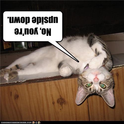 No, you're upside down.