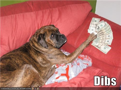 bull mastiff cash couch dibs dolla-dolla-bills-yall dollar bills mine mixed breed money not yours rich wealthy
