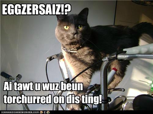 Cheezburger Image 5171881984