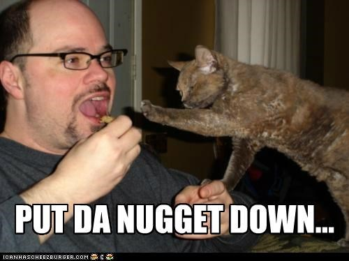animals,Cats,eating,food,I Can Has Cheezburger,nuggets,put it down,want
