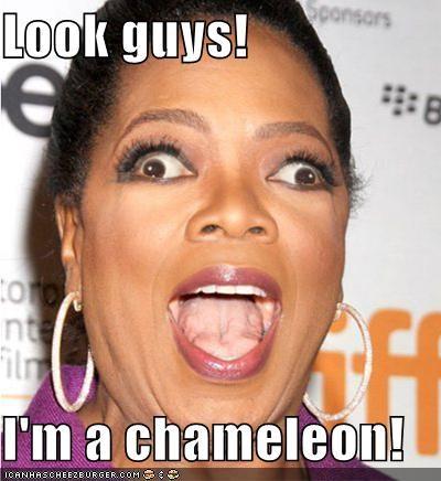 chameleons cross eyed derp look guys look alikes Oprah Winfrey roflrazzi wtf - 5172340480