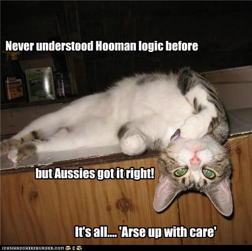 Never understood Hooman logic before but Aussies got it right! It's all.... 'Arse up with care'