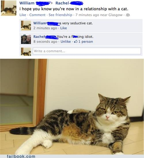 cat profile picture relationship sexy