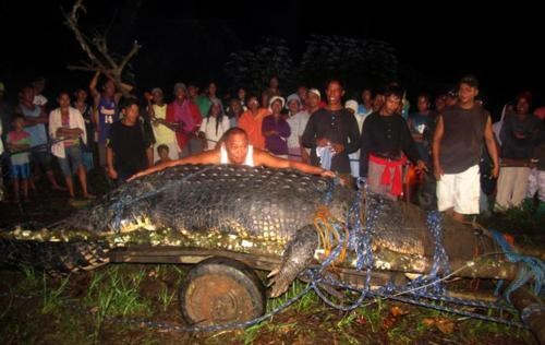 Bunawan,Damn Nature U Scary,Nuke It From Orbit,Paging Captain Hook,Ultra-Croc,Well This Is Something,What A Croc
