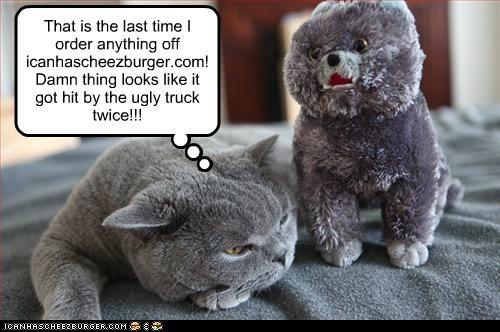Cheezburger Image 5173631232