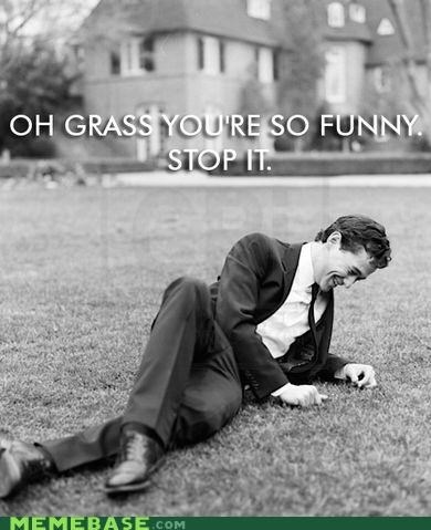 funny grass laughing man Memes stock - 5173915392