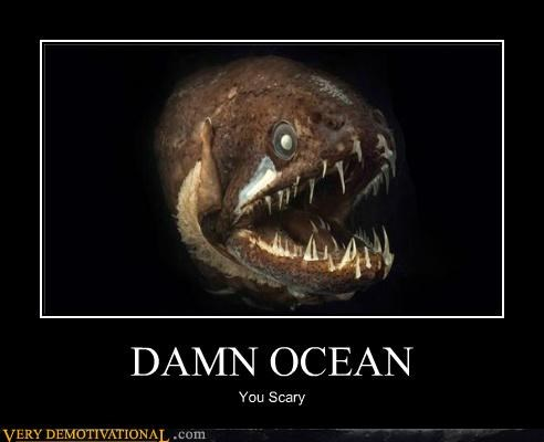 animals fish ocean scary Terrifying - 5174004736