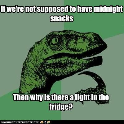 dessert,fridge,lights,midnight,philosoraptor,proof,pudding,snacks