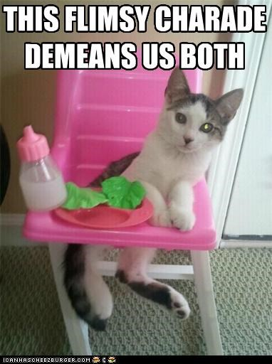 both caption captioned cat charade demeans flimsy high seat us