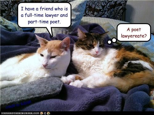 caption,captioned,cat,Cats,full time,groan,lawyer,part time,poet,poet laureate,pun,similar sounding