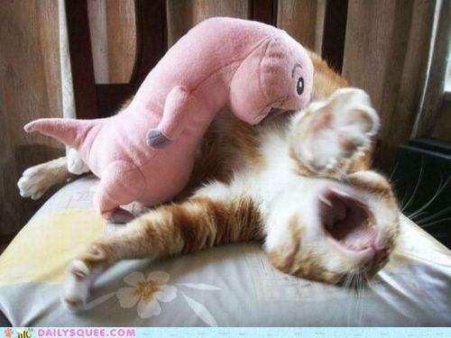 acting like animals calling cat dramatic help injured naked mole rat stuffed animal - 5175993344