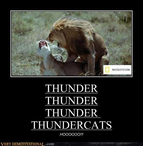 THUNDER THUNDER THUNDER THUNDERCATS HOOOOOO!!!