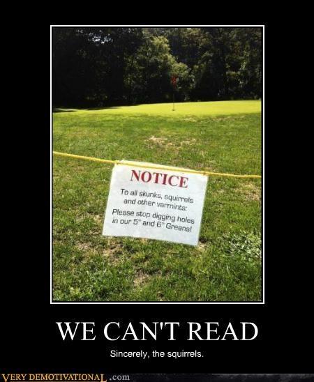 hilarious illiterate notice sign squirrels - 5177620480