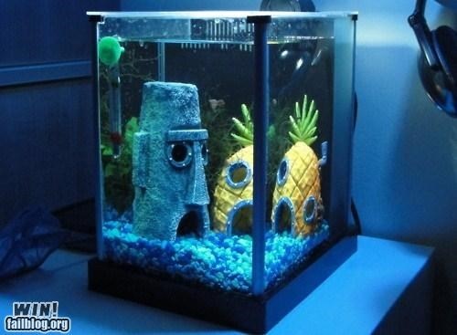 90s aquarium cartoons fish modification nickelodeon nostalgia pets SpongeBob SquarePants - 5179026176