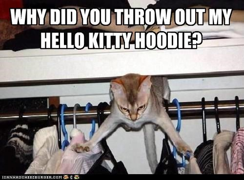 angry caption captioned cat did hello kitty hoodie my out question throw unforgivable upset why you - 5179585536