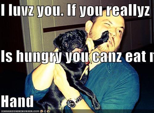 Cheezburger Image 5179902208