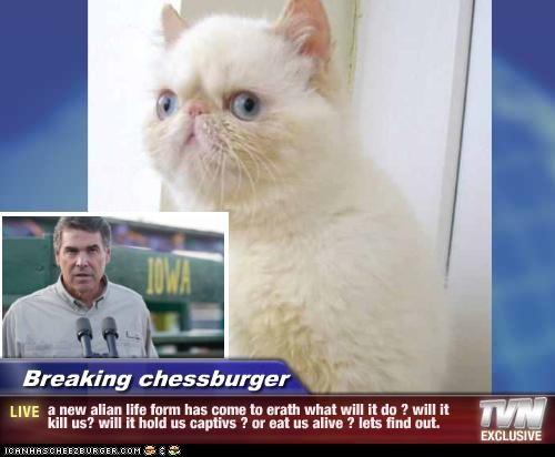 Cheezburger Image 5180138752