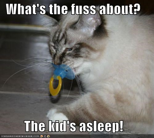asleep,caption,captioned,cat,excuse,explanation,fuss,kid,pacifier,question,what