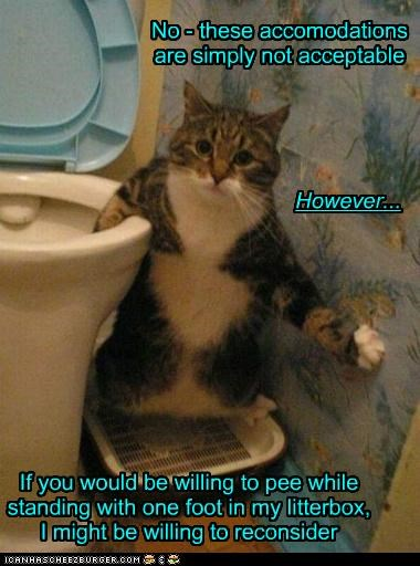 No - these accomodations are simply not acceptable However... If you would be willing to pee while standing with one foot in my litterbox, I might be willing to reconsider