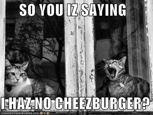 Cheezburger Image 5180478208