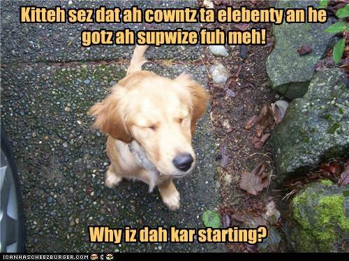 Kitteh sez dat ah cowntz ta elebenty an he gotz ah supwize fuh meh! Why iz dah kar starting?