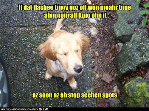 If dat flashee tingy goz off wun moahr time ahm goin all Kujo ohn it az soon az ah stop seehen spots