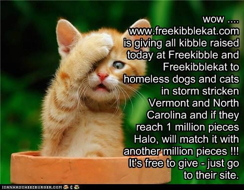wow .... www.freekibblekat.com is giving all kibble raised today at Freekibble and Freekibblekat to homeless dogs and cats in storm stricken Vermont and North Carolina and if they reach 1 million pieces Halo, will match it with another million pieces !!! It's free to give - just go to their site.
