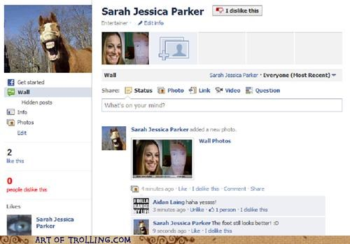 facebook,group,horse,sarah jessica parker