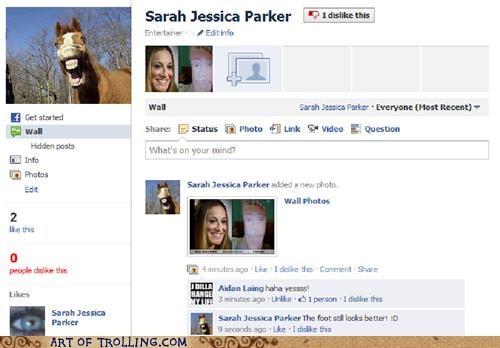 facebook group horse sarah jessica parker - 5180777728