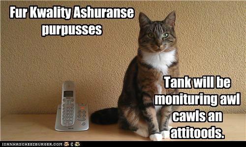 Fur Kwality Ashuranse purpusses Tank will be monituring awl cawls an attitoods.