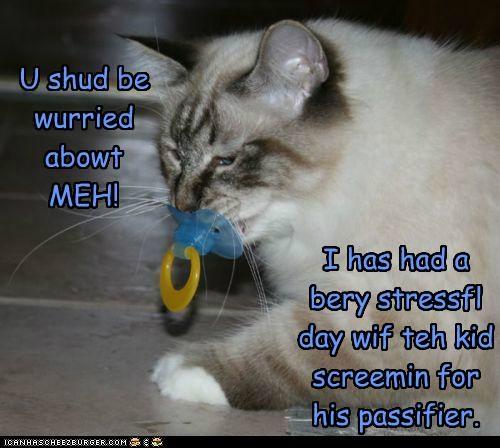 U shud be wurried abowt MEH! I has had a bery stressfl day wif teh kid screemin for his passifier.