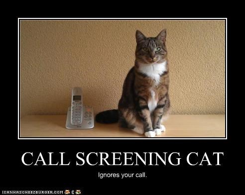 CALL SCREENING CAT Ignores your call.