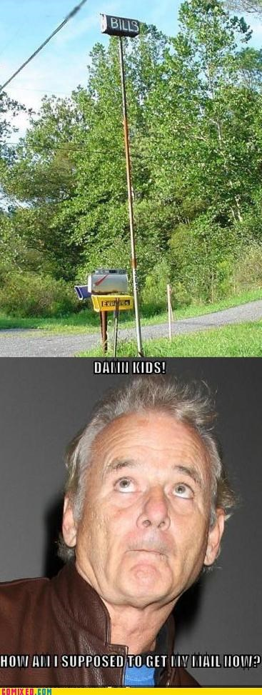 bill murray celebutard lawn mailbox too damn high - 5182430208