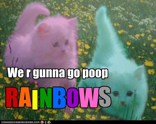 animals,Cats,colors,I Can Has Cheezburger,photoshopped,poop,pretty,rainbows