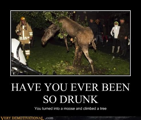 drunk,hilarious,moose,tree