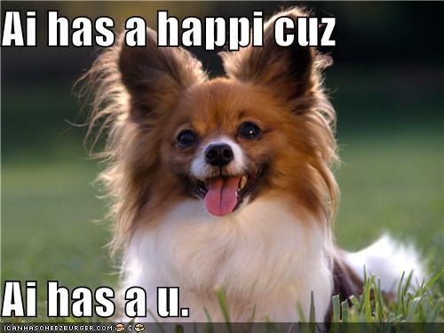 happy happy dog papillon smile smiles smiling tongue - 5185165312