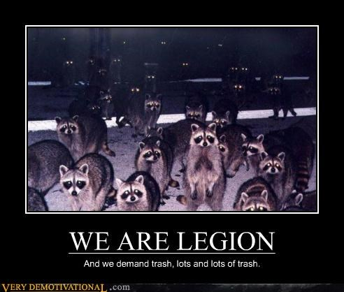 hilarious legion raccoon trash - 5185196544