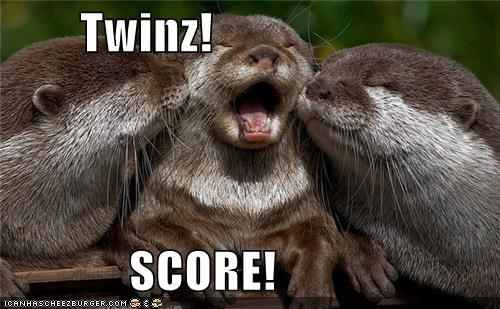 animals cute I Can Has Cheezburger kisses kissing otters twins - 5185246208