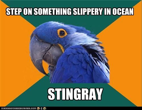 STEP ON SOMETHING SLIPPERY IN OCEAN