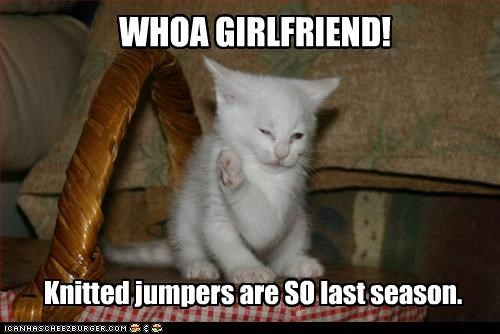 awful caption captioned cat critique do not want fashion girlfriend jumpers kitten Knitted last season so who