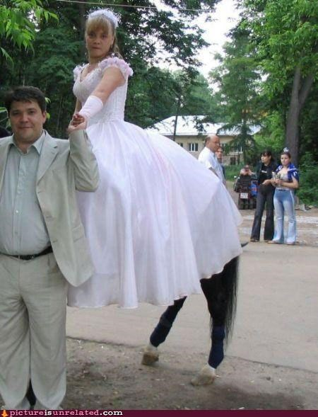 centaur creepy wedding wtf