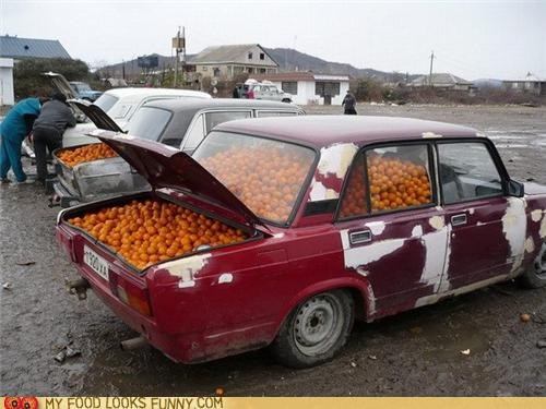 cars citrus full oranges trunk vitamin c - 5186750208
