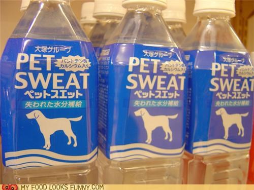 bottles dogs pet sweat plastic sweat water - 5187060480