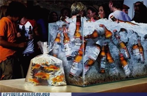aquarium beer beerquarium bottle budweiser crunk critters goldfish priorities - 5187091456