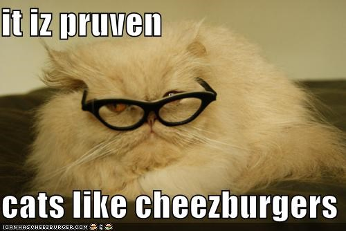 Cheezburger Image 5188296704